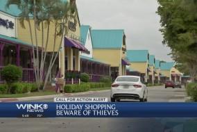holidaythieves